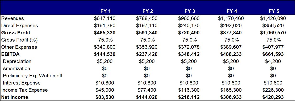 Business Plan Financial Summary